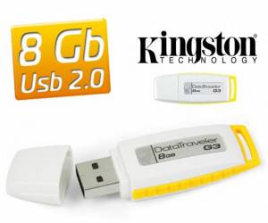8/_/GB/_/Kingston/_/Flash/_/Bellek